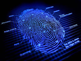 digital fingerprinting Montréal